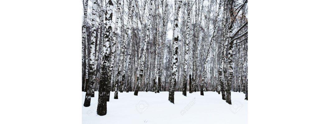 Ловна екипировка за зимни условия