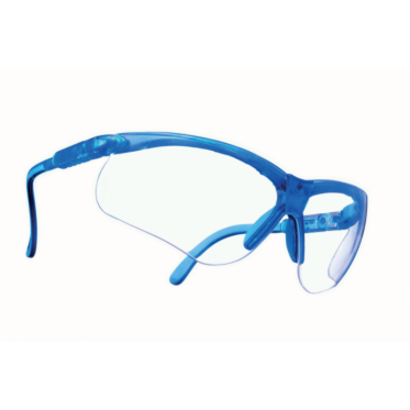 MSA Perspecta 010 safety glasses /clear lenses/