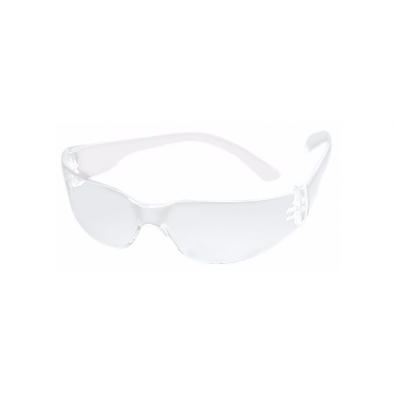 MSA Perspecta FL250 safety glasses /clear lenses/